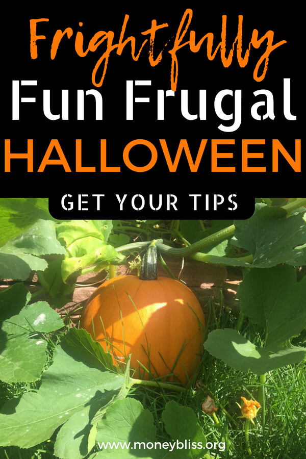 Learn how to celebrate Halloween on a budget. Save money or DIY costumers, decorations, or crafts. Enjoy a frugal Halloween with these ideas and tips. #halloween #frugal #fun #kids #celebrate #holidays