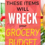 Learn how to grocery shop on a budget. Save money by not buying these items. Save money on groceries today! These grocery money saving tips will save you thousands. - Money Bliss #grocerybudget #shop