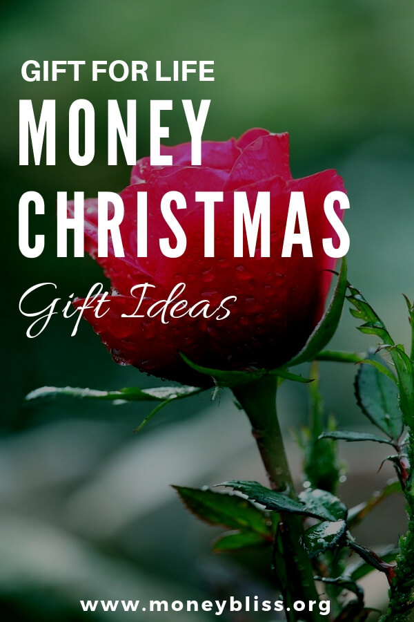 Looking for financial gifts that are better than cash? Perfect Christmas gifts for teens, for college students, for millennials, for couples, for parents or even coworkers. Find unique, cool, and trendy gift ideas. Find the best gift you can give for life. Teach kids about money. Money lessons.