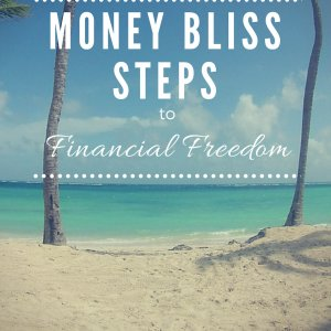 Money Bliss Steps to Financial Freedom Book