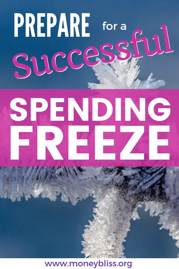 If you need to save money quickly or pay off debt fast, then a spending freeze is perfect. Make it successful with this tips and ideas. Count those pennies! #money #spendingfreeze #moneybliss