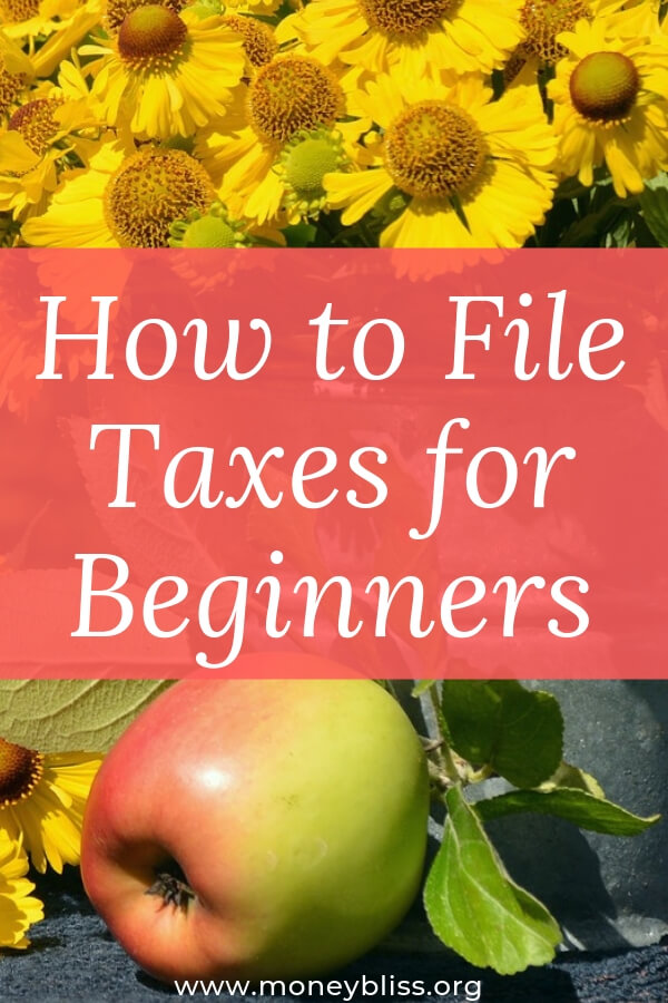Learn how to file taxes as a beginner. Understand how to organize your paper clutter and find the refund money due to you. #taxes #beginner #moneybliss