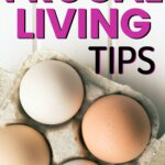 Find the best frugal living tips to save money this year. Saving money has never been so easy. Live frugally and become thrifty in all areas of your life. Your personal finances will thank you.