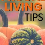 Whether you are a pro at a frugal lifestyle or starting your frugal living for beginners, this post will cover all of the tips, ideas, and hacks to saving money. Penny pinching doesn't have to be embarrassing. Follow frugal living with minimalist or to the extreme - that is up to you and your life.