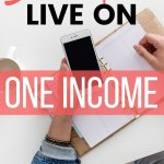 You can live on one income whether you want to stay at home or single moms. Learn how to be successful on a single income in a dual income world. Get actionable tips and live the life you want. #budget #income #moneybliss