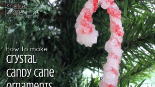 Crystal Candy Canes - fun Christmas science project – Go Science Kids